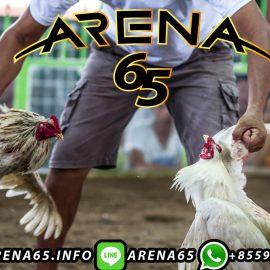 Situs Judi Sabung Ayam Online S128